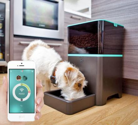 This Feeder Allows You To Feed Your Dog or Cat From Your Smart Phone