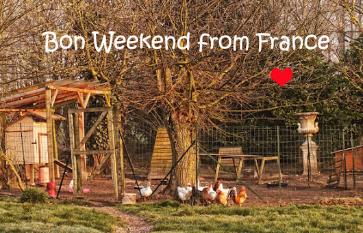 Chickens, contests and more newsletter from France