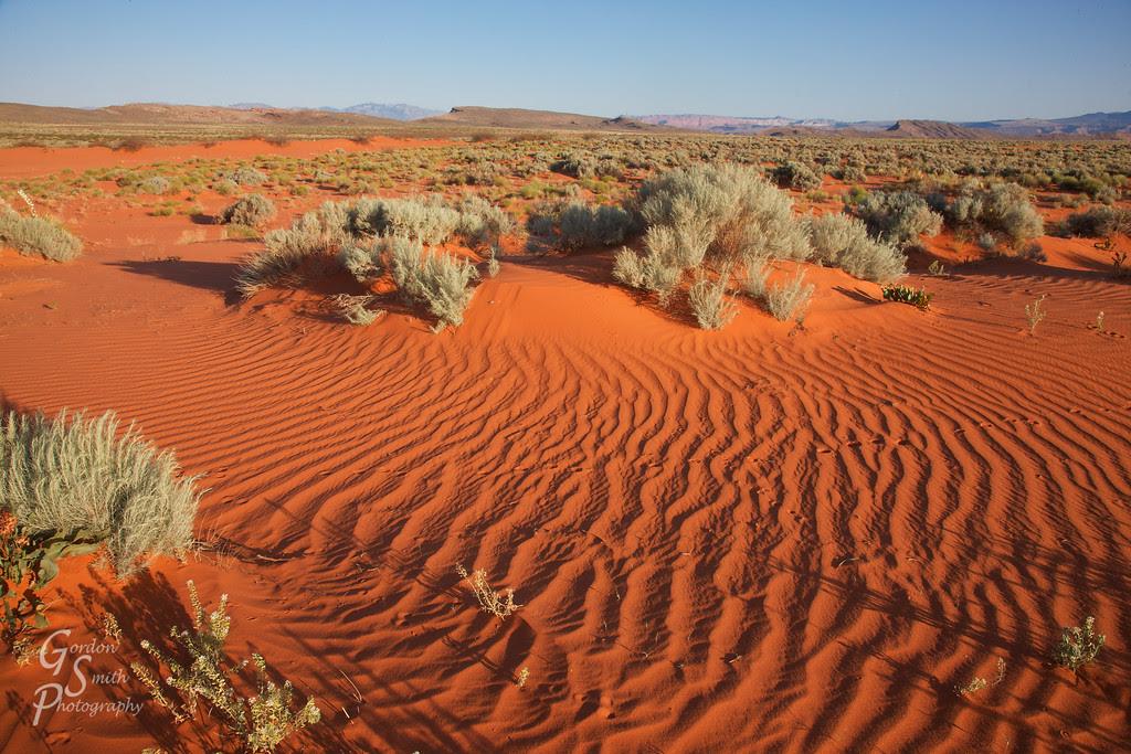 warner valley dunes at sunrise
