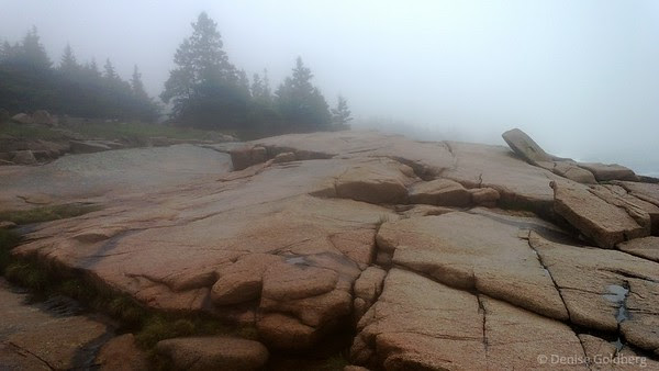 a foggy day along the coast, Acadia National Park