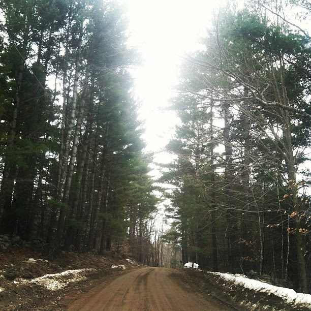 This dirt road leads me home to family and to my soul. #NHwoods