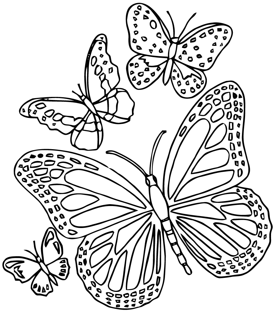 Butterfly Mandala Coloring Pages at GetColorings.com ...