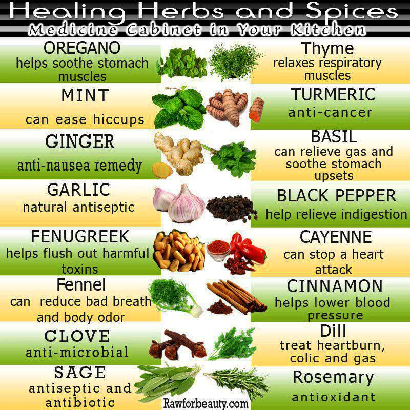 Healing Herbs and Sp