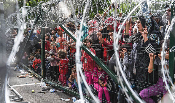 Migrants at Hungary's border fence