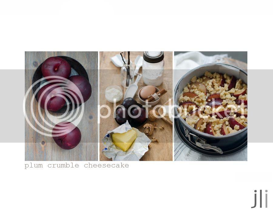 plum crumble cheesecake photo blog-2_zps5084115d.jpg