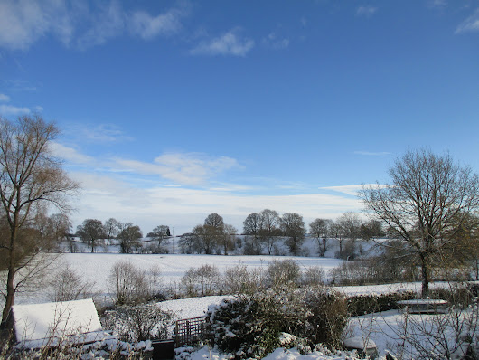 Snow in Shropshire – The Next Day (see the previous post)