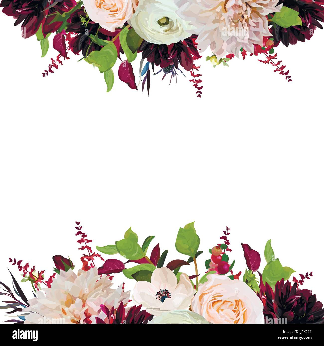 vector floral design square card design pink rose burgundy dahlia JRX266