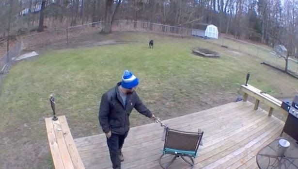 Rekaman CCTV Seseorang Yang Bermain Dengan Anjing Tuai Kecaman - Bengkelhoki