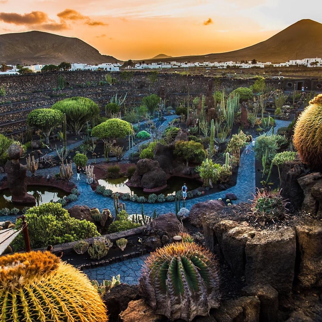 Planet Exotica Est Un Grand Parc Arbor Et Exotique  Royan