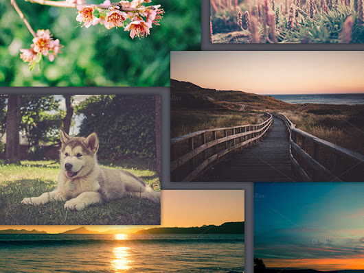 Access Amazing Stock Images for All You Content Creation Needs