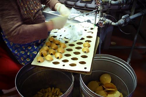 fortunecookies