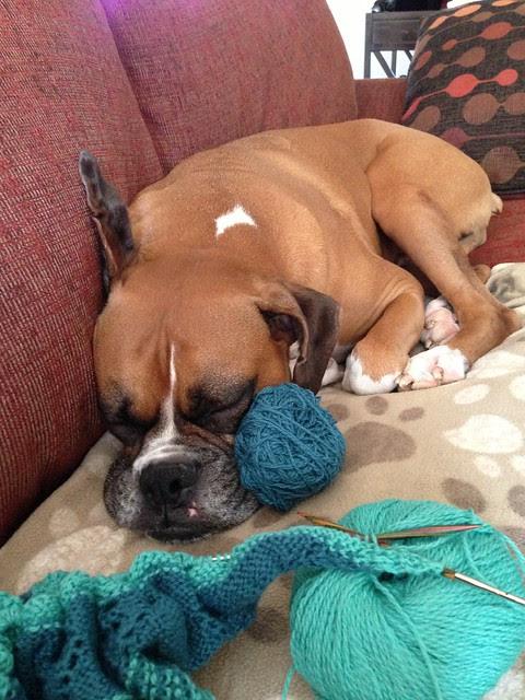 conan and yarn