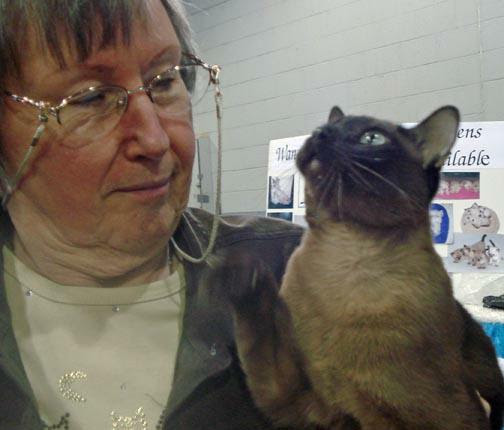 Tonkinese and owner