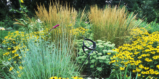 These are the best ornamental grasses for your garden