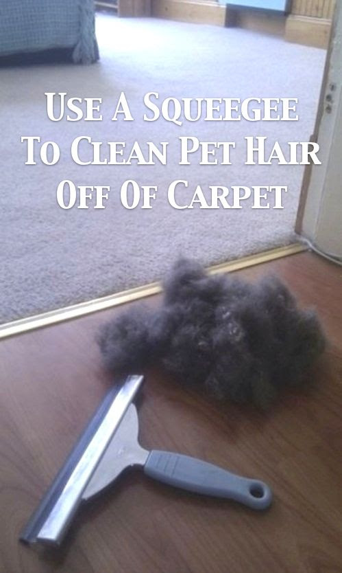 Squeegee Hair Picker Upper - I knew this one, but now I can tell everyone! | 55 Must-Read Cleaning Tips and Tricks