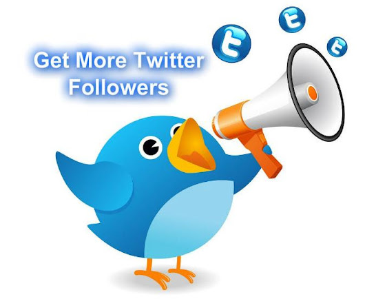 I will give you 1000 Twitter Followers