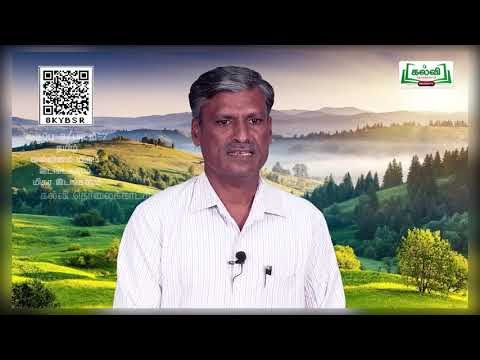 8th Tamil வல்லினம் மிகு இடங்களும் மிகா இடங்களும்  அலகு 7 பகுதி 1 TM  Kalvi TV