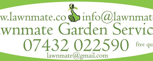 Lawnmate Garden and Handyman services.