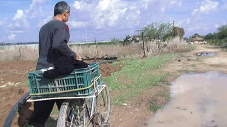 El difícil trabajo de los campesinos de la franja de Gaza