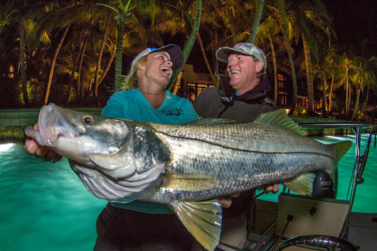 Big Miami Snook with FishTrack Pro Team! Fishing Report - February 25, 2016
