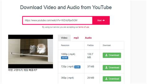 safe youtube downloaders   grab youtube