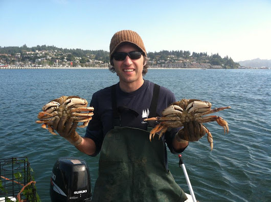 How To Catch Crab: The Ultimate Guide To Crabbing (Plus The BEST Bait)