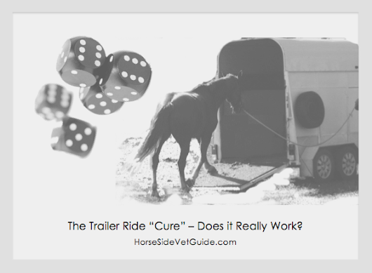 "The Trailer Ride ""Cure"" for Equine Colic - Horse Side Vet Guide"