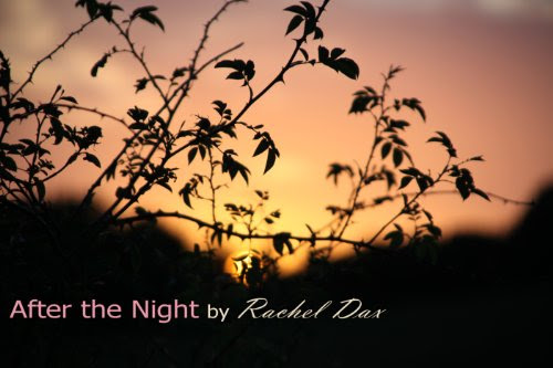 After The Night by Rachel Dax