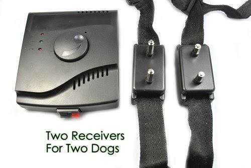 chiens colliers de dressage esky cl ture invisible anti fugue collier lectrique pour chien. Black Bedroom Furniture Sets. Home Design Ideas
