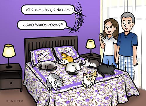 quadrinhos sobre gatos, quadrinhos divertidos