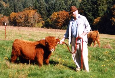 http://www.minihighlandcattle.com/wp-content/uploads/2012/08/Button-33in-at-20-mo-web.jpg