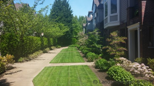 What HOAs Need To Know To Select The Right Landscape Maintenance Partner - Portland Landscaping Company