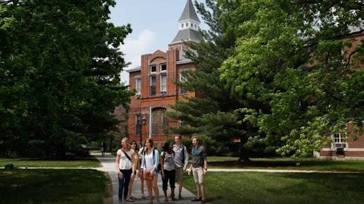 Michigan State University Acceptance Rate 2019-20 | 2018 2019 HelpToStudy.com