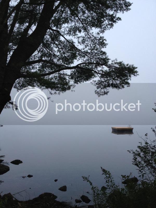 photo IMG_1021_zps785d8e4c.jpg