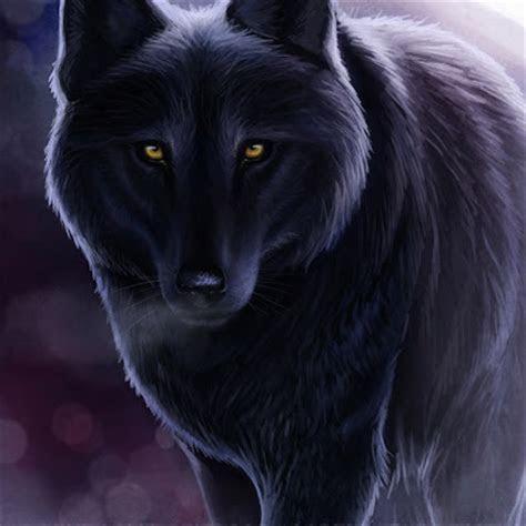 gambar serigala keren  alam liar
