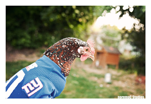 Football and Chickens