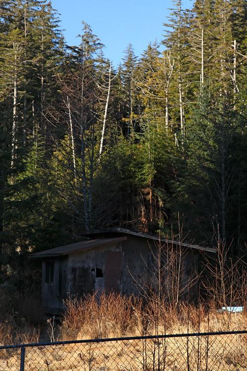 cabin, Kasaan, Alaska