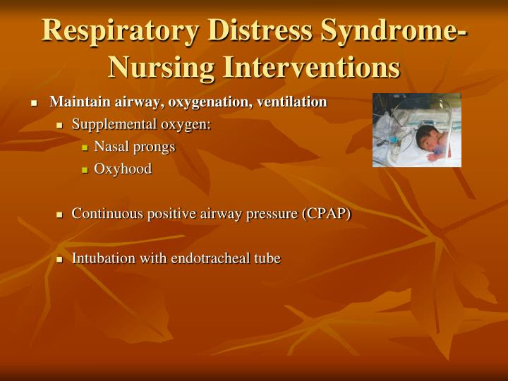 PPT - High Risk Neonate PowerPoint Presentation - ID:1362553
