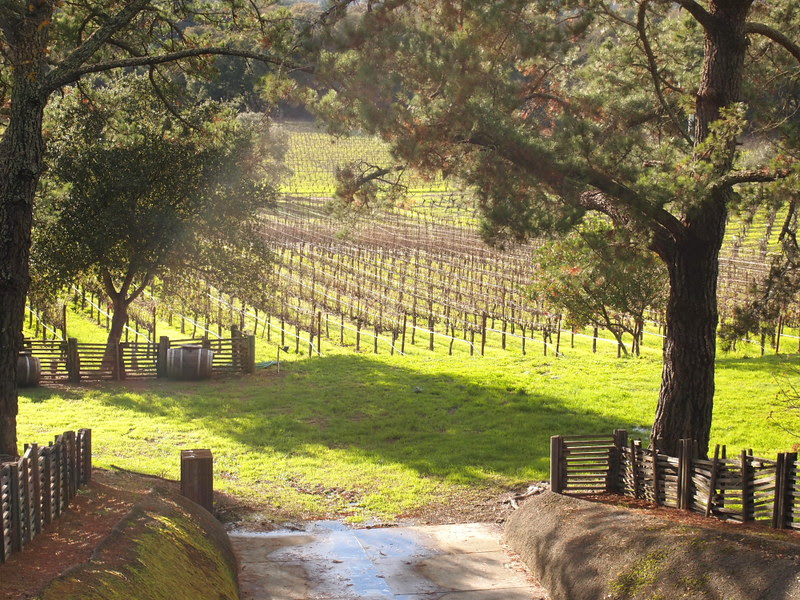 wine country2