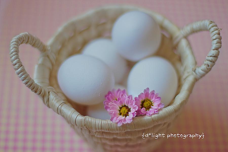 .Eggcellent Week.