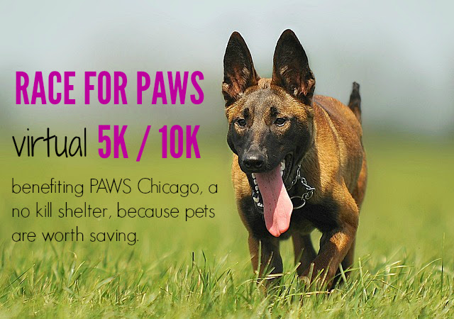 raceforpaws-virtual5k10k