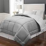 Twin Reversible Down Alternative Microfiber Comforter - White/Platinum