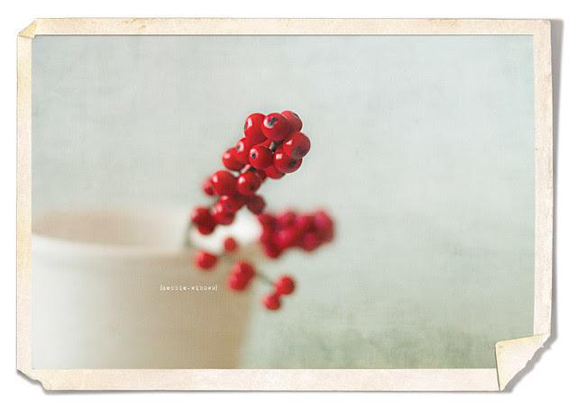 PTM_vintage frame