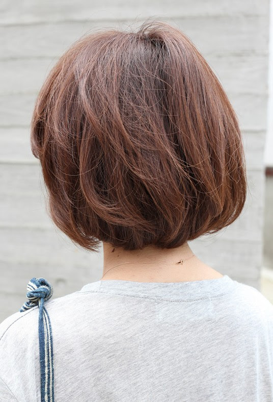 Back  View  Short Brown Bob  Hairstyle  Hairstyles  Weekly