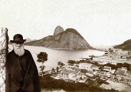 Darwin in Rio de Janeiro