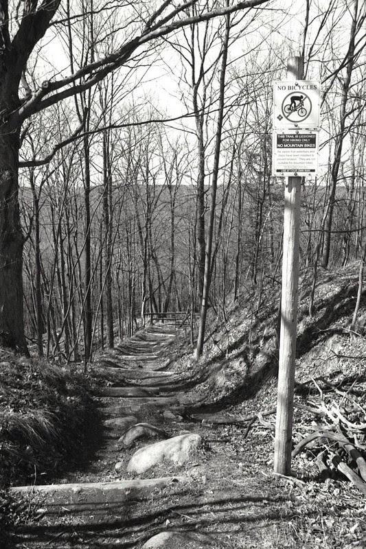 Down the Side Trail