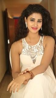 Pavani Andhra Actress new photos 2016