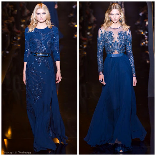 Autumn/Winter 2015-16 Elie Saab
