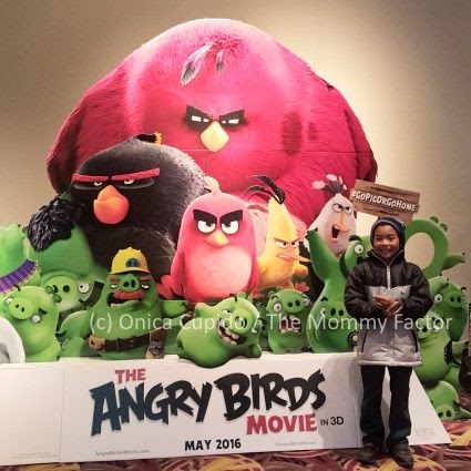 The Angry Birds Movie Photos and Trailer