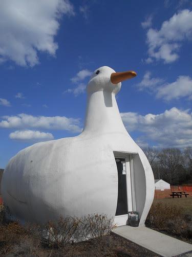 Big Duck (2)